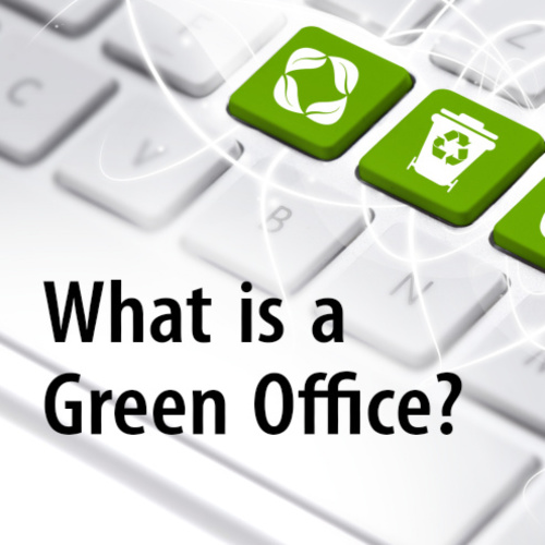 What Is a Green Office? And 6 Ways to Becoming One